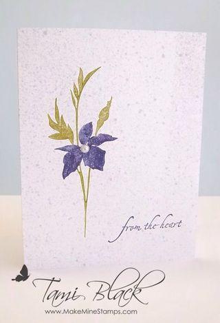 2.26.2012 Fabulous Florets